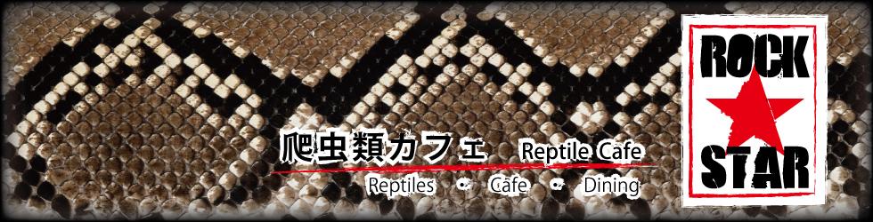 爬虫類カフェ ROCK STAR